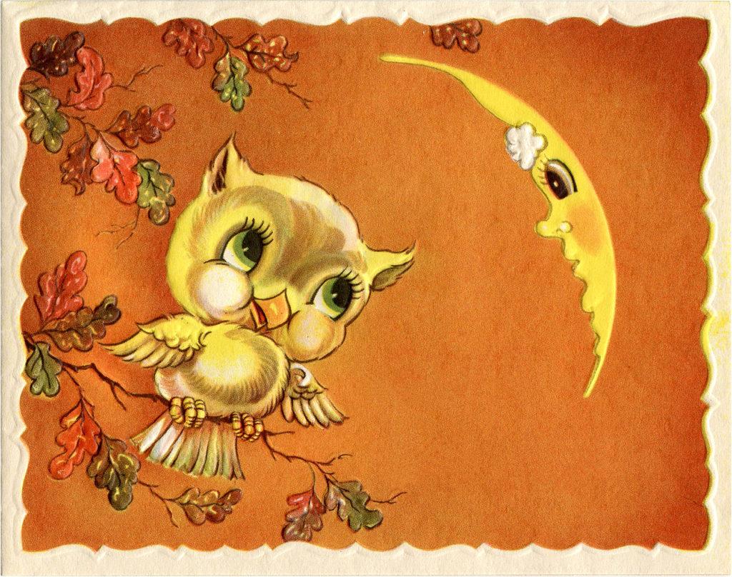 Retro Owl Moon Image