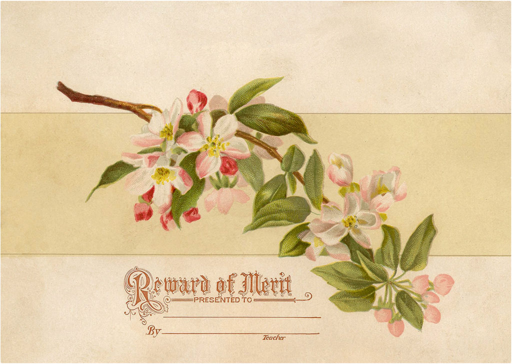 Floral Reward of Merit Card