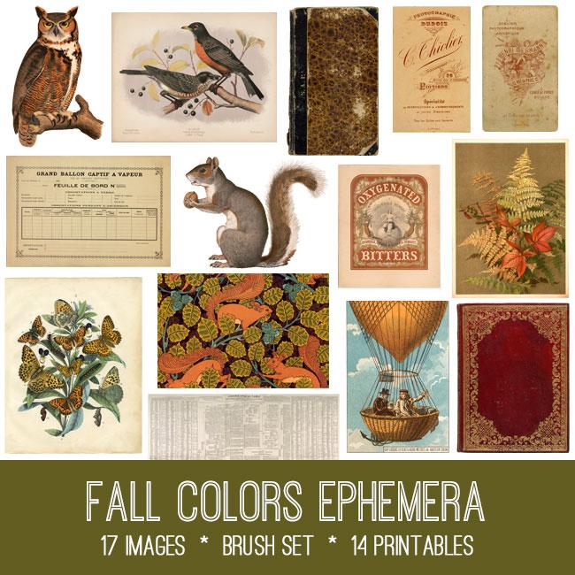Fall Colors Ephemera Kit
