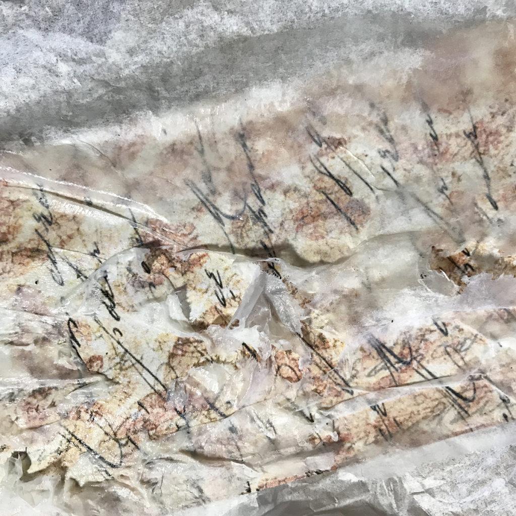 Torn Tissue Paper