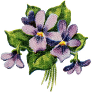 Retro Violets Graphics Set – 1940s -1950s
