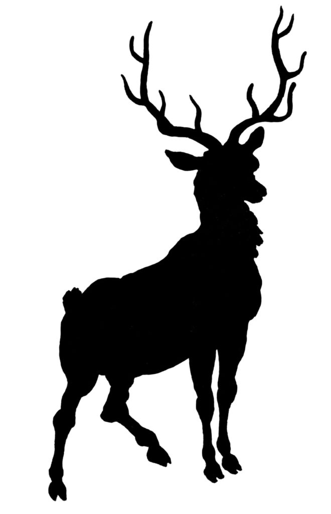 Deer with Antlers Silhouette Image
