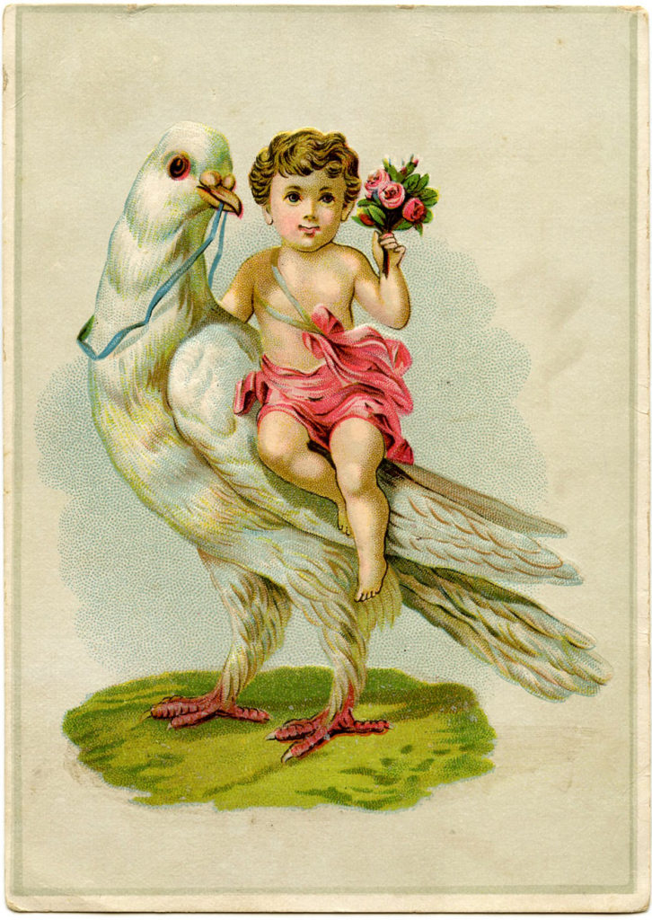 Cherub with Dove Image