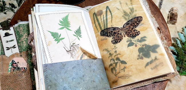Butterfly and Insects Softcover Forest Junk Journal