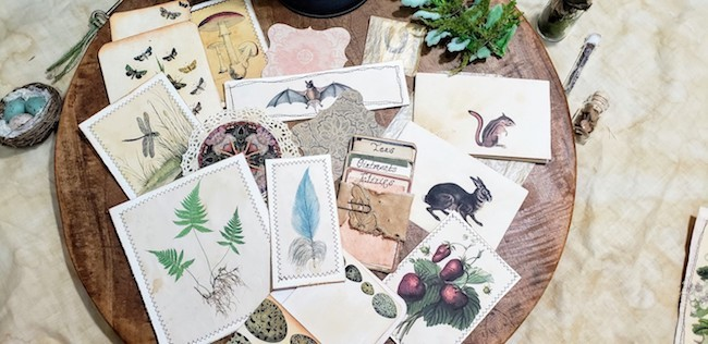 Journaling Cards Ephemera Softcover Forest Junk Journal