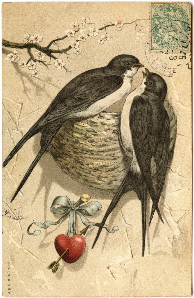 Swallows Nest Valentine