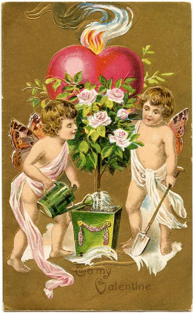 Valentine Fairies Images