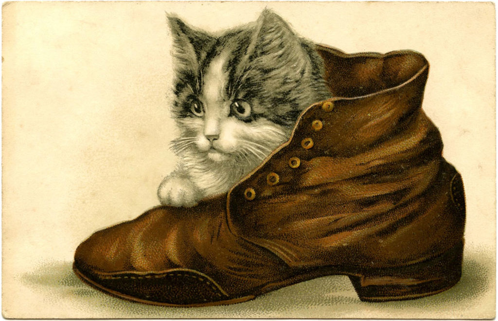 12 Beautiful Vintage Kitten And Cat Pictures The