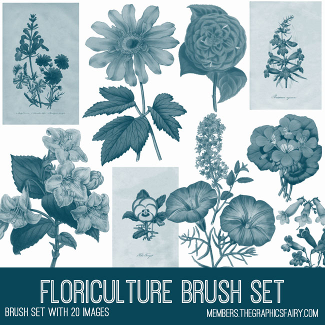 Botanical Floral Brush Set