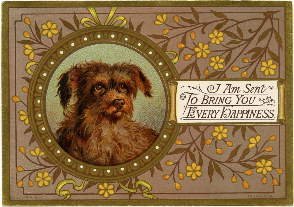 Vintage Dog Image Terrier