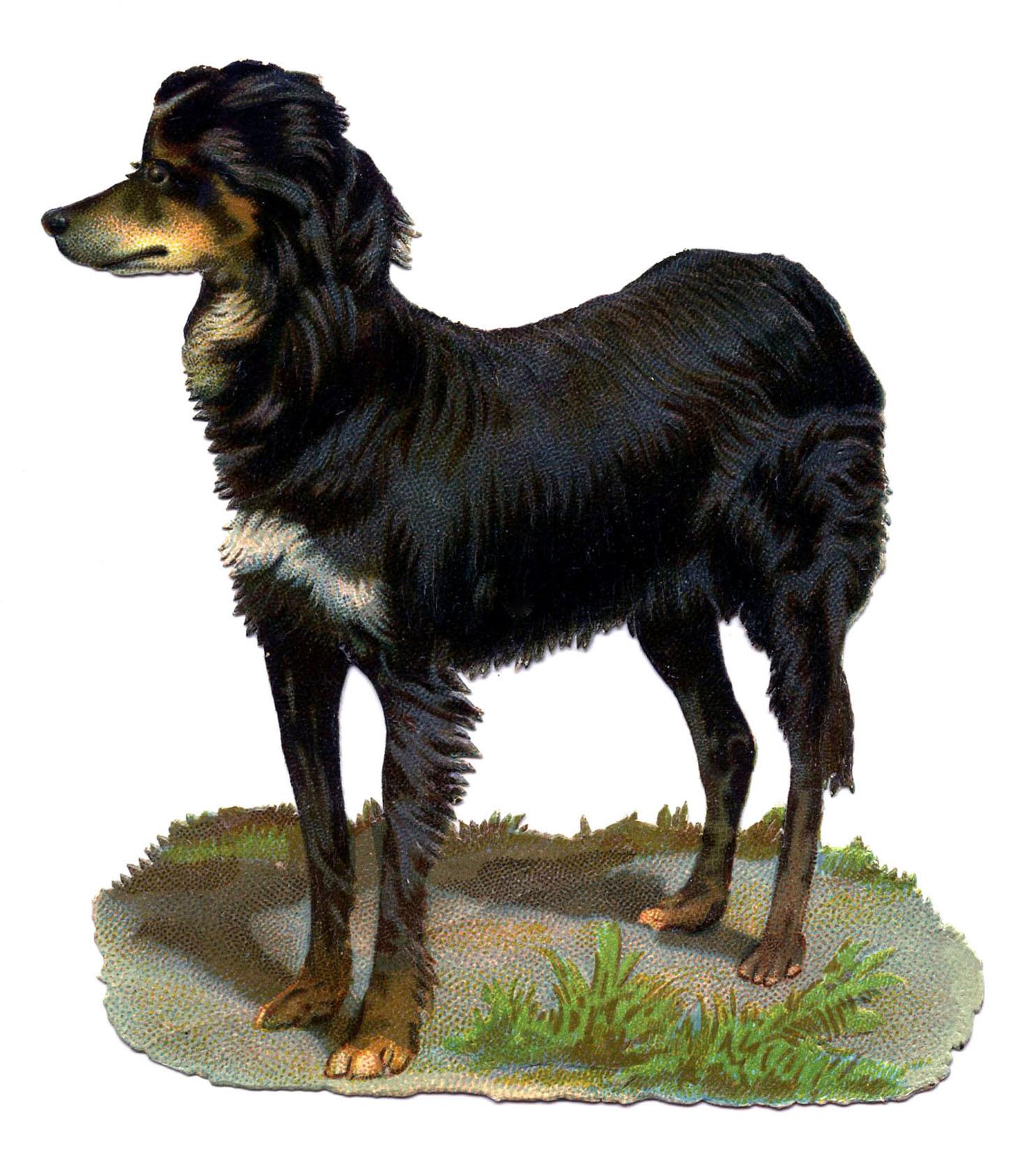 Vintage-Dog-Black-Brown-GraphicsFairy