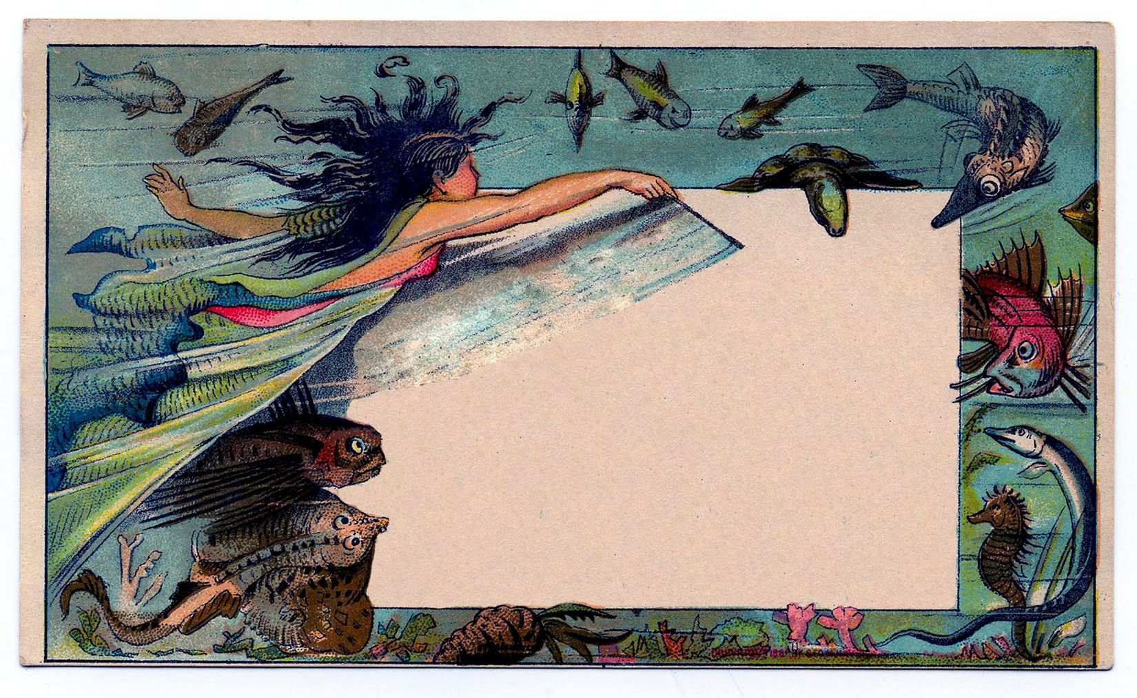 Mermaid Fairy Card Blank