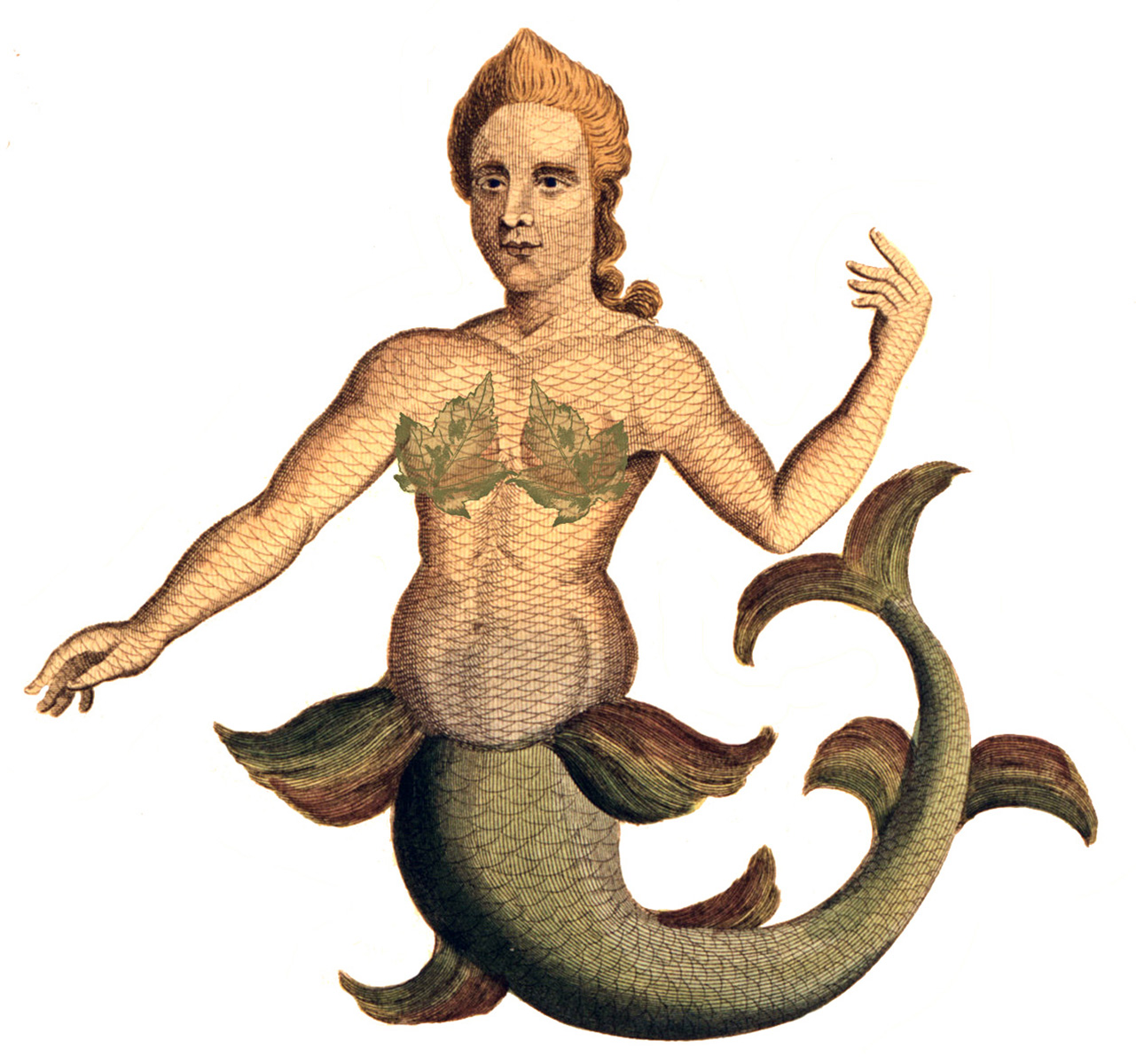 Sea Hag Mermaid Image