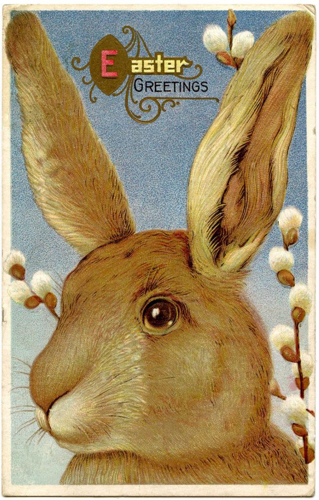 Big Bunny Vintage Image
