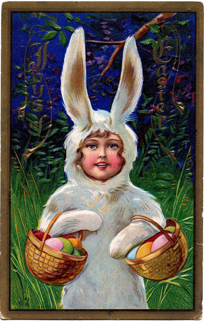 Easter Bunny Costume Image