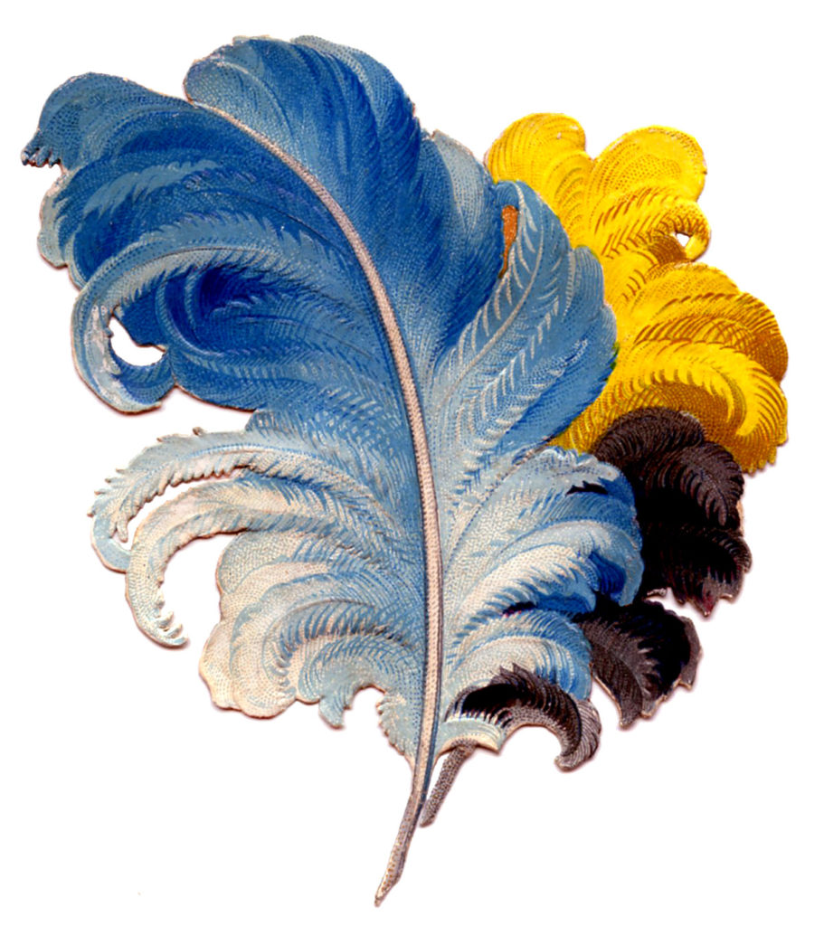 Feathers Plumes Vintage Blue and Yellow
