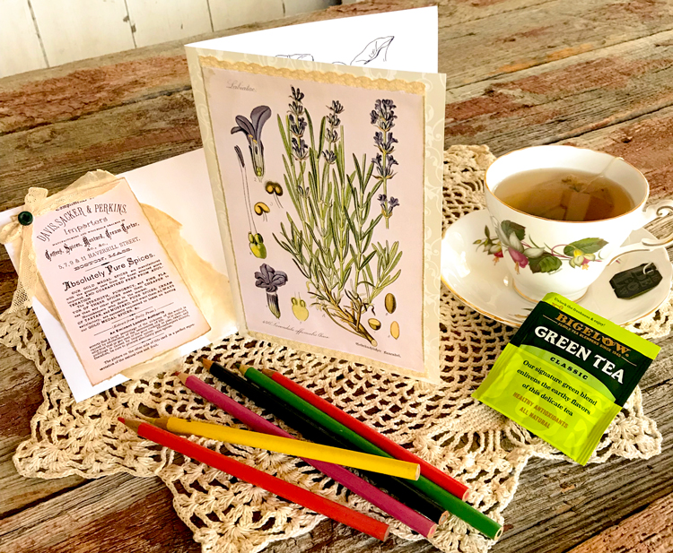 Herb Tea Mixed Media Gift Card HERO