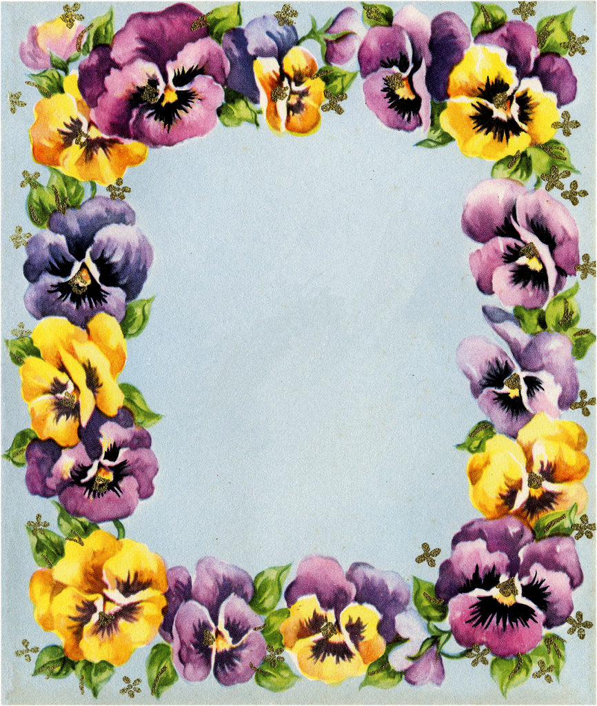 Pansy Floral Frame Graphic