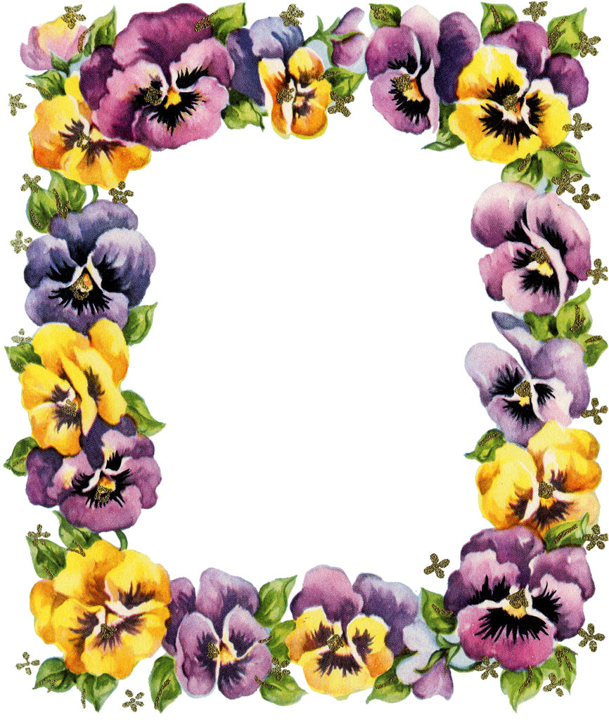 Retro Pansy Graphic Set