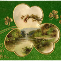 St Pats Clover Picture