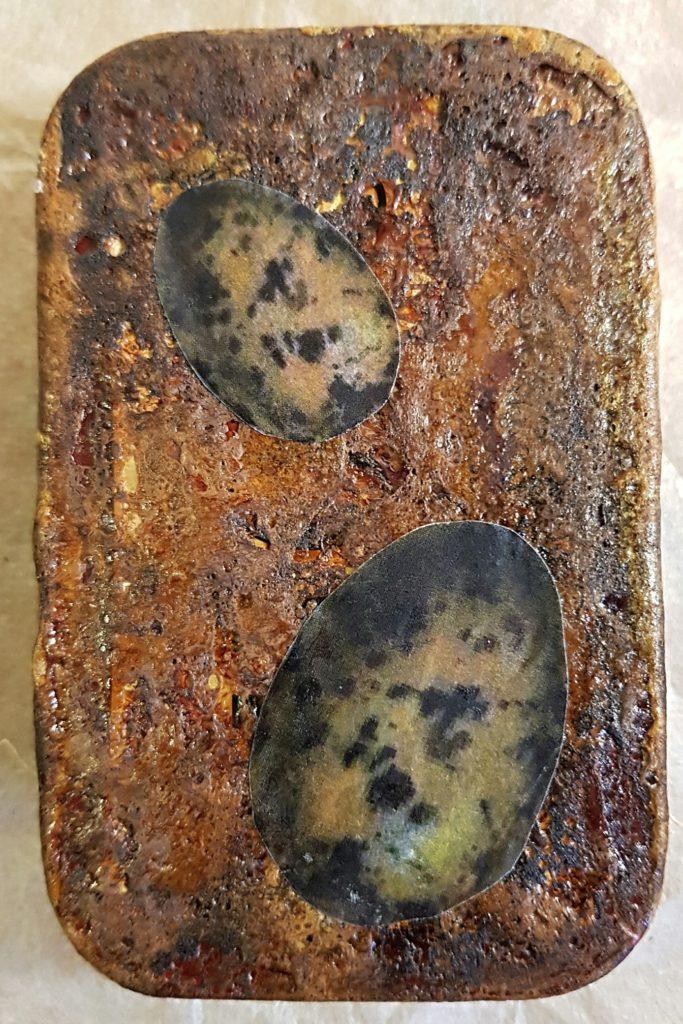Altered Altoid Tin Shadowbox Bird Eggs Cover