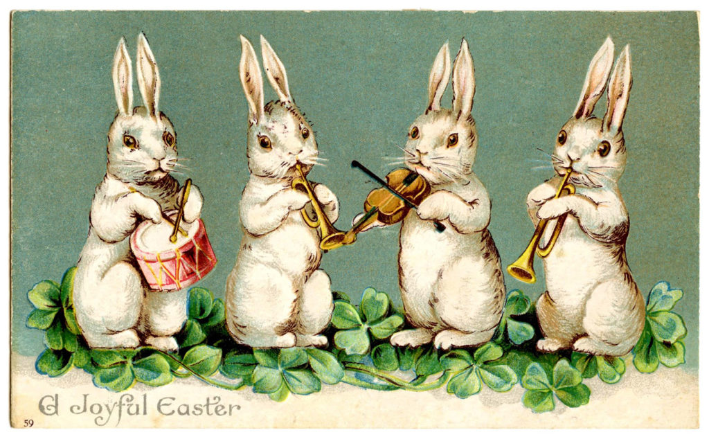 Musical Bunnies Band