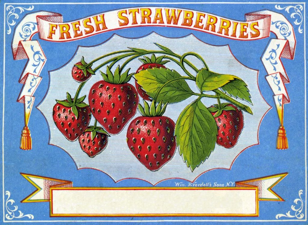 Strawberries Label