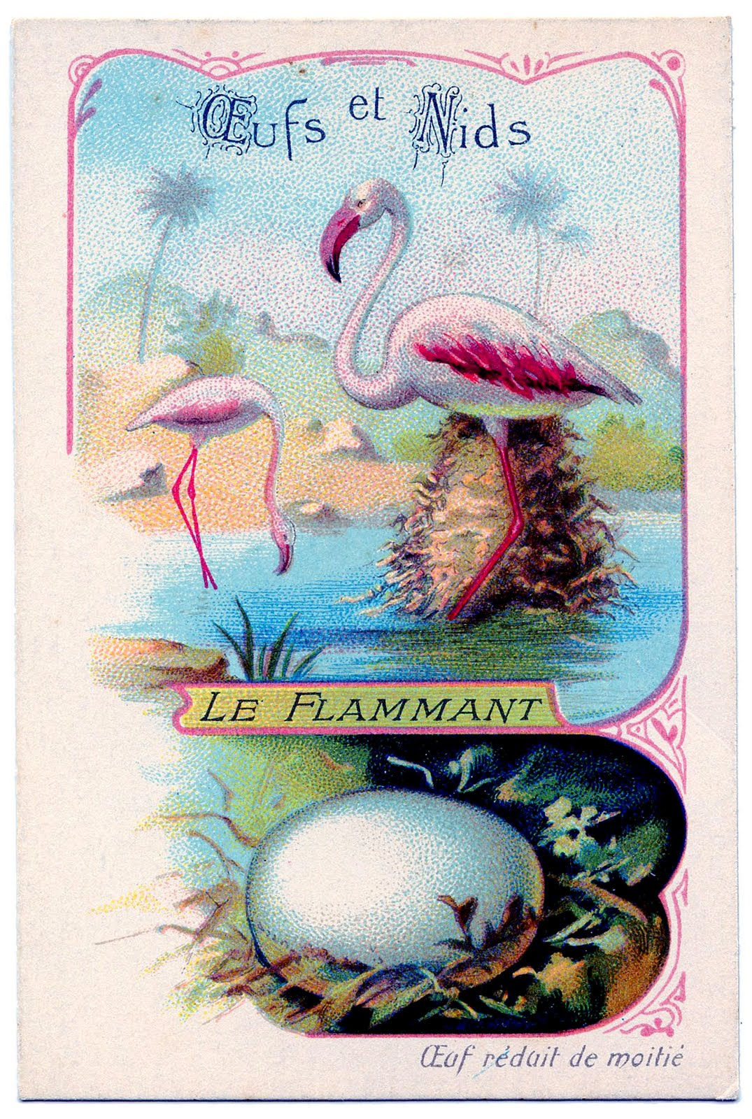 flamingos+vintage+graphicsfairy006b (1)