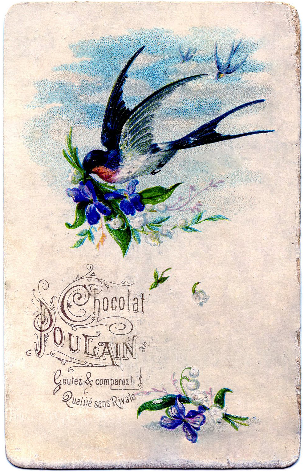 swallow+violets+vintage+image+graphicsfairy010b