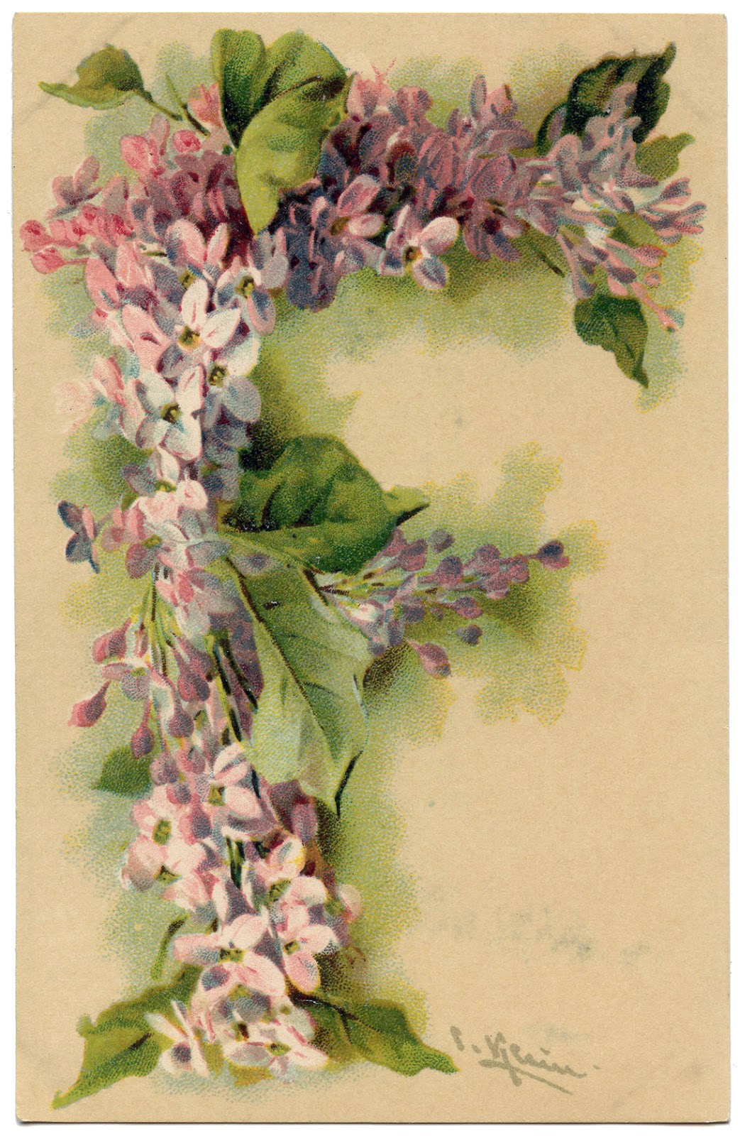 Lilac-Letter-F-Vintage-Image-GraphicsFairy1