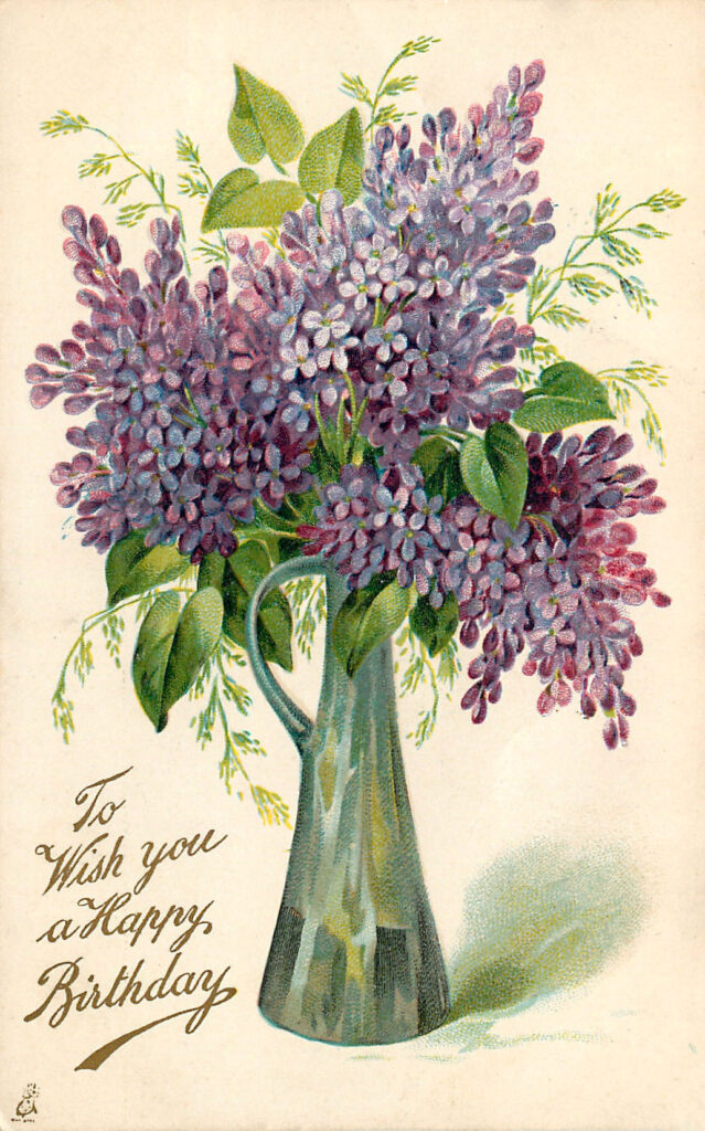 Lilacs in Pitcher Clipart
