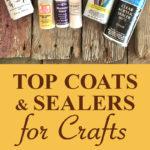 Top Coats and Sealers Pin