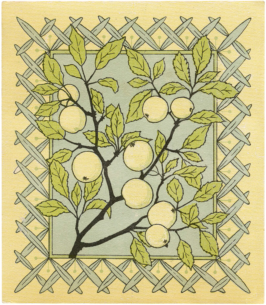 Vintage Apple Branches Picture