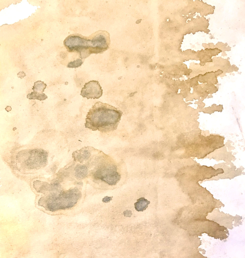 Mildew Paper Distressing Technique on Plain Paper