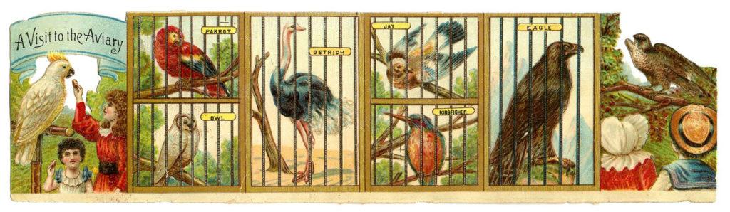 Bird Aviary Printable