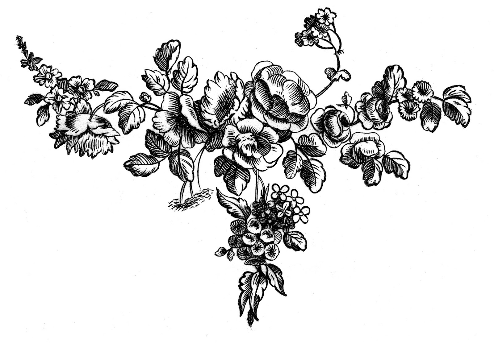 French-Floral-Engravings-Roses-GraphicsFairy