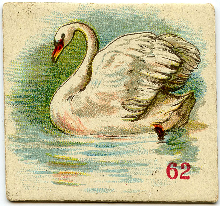 Swan Game Card Image