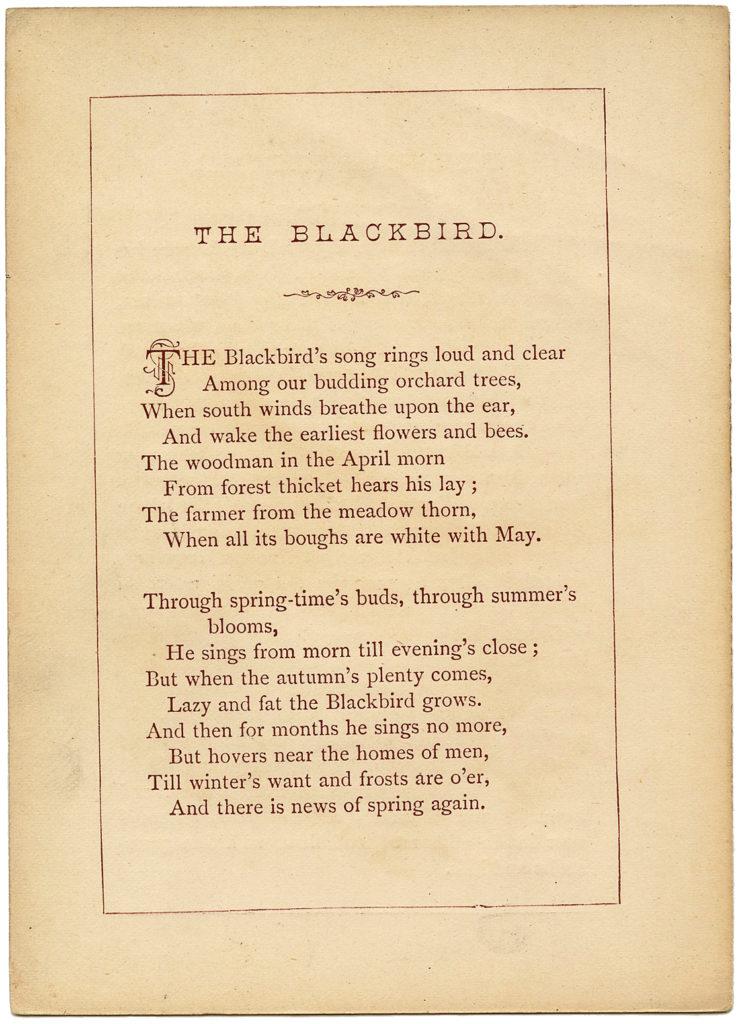 Blackbird Ephemera Poem Card