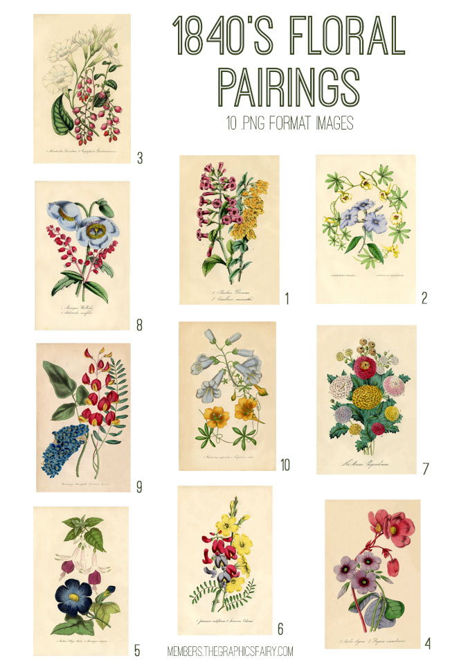 Antique Floral Printables