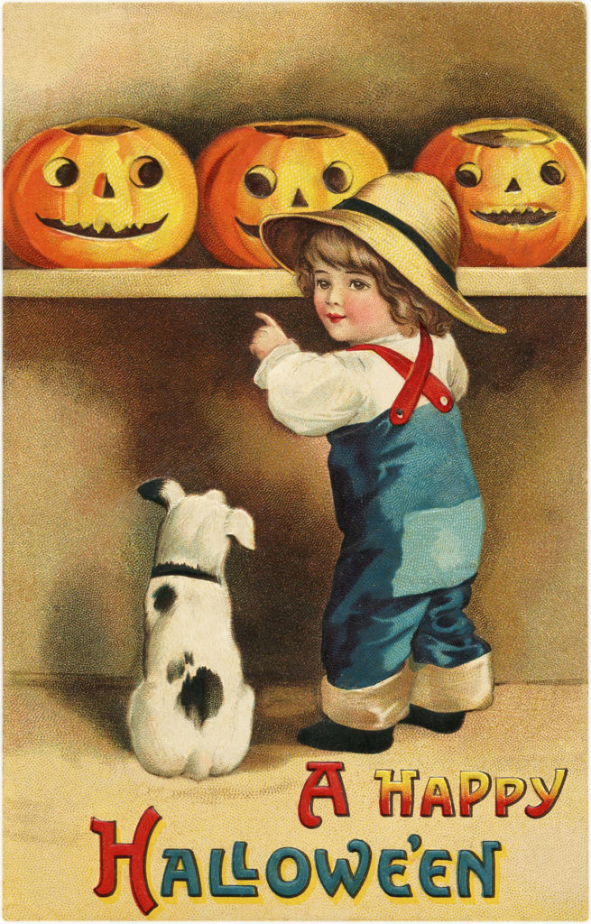 boy pumpkins dog image