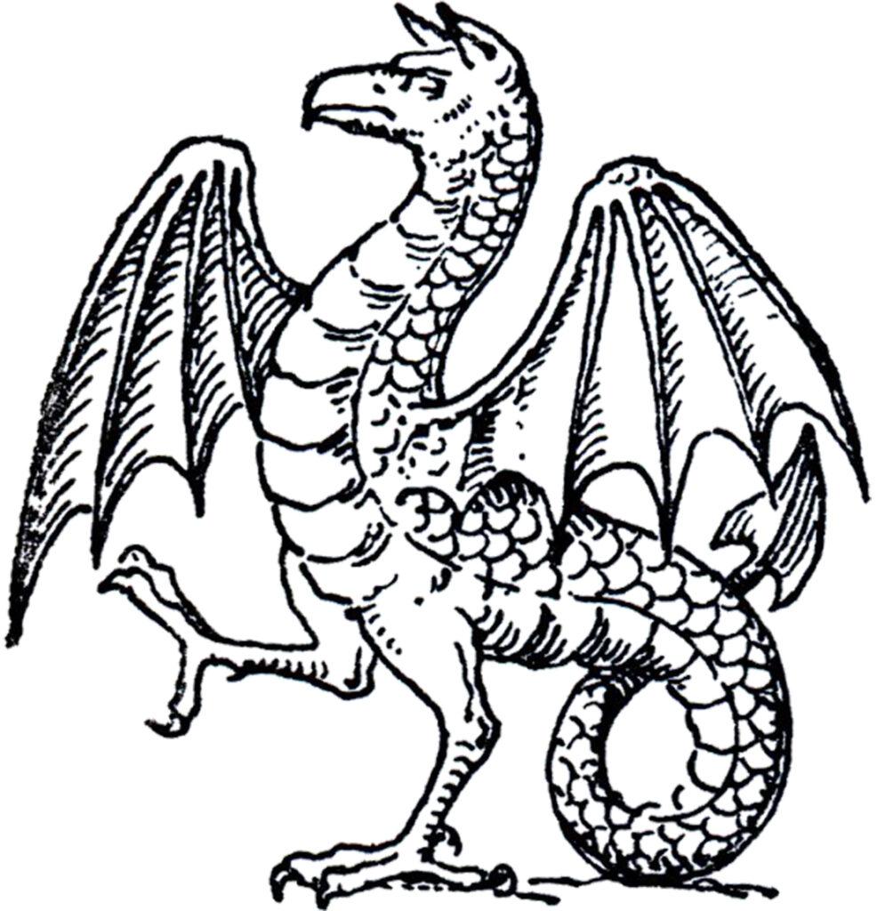 Dragon Line Art Image
