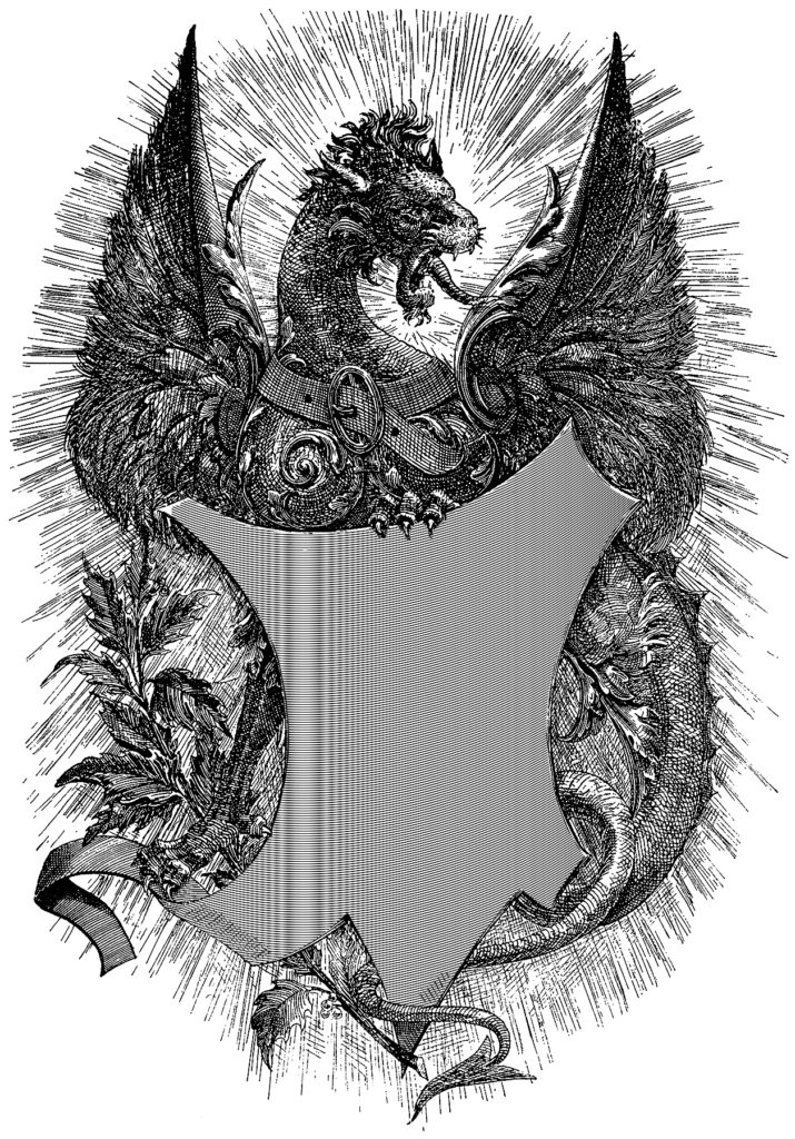 Dragon with Shield Image