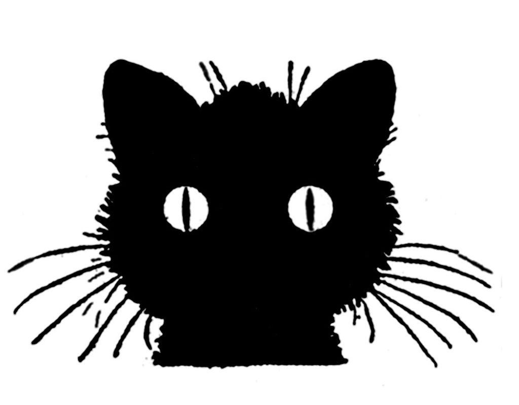 retro vintage black cat