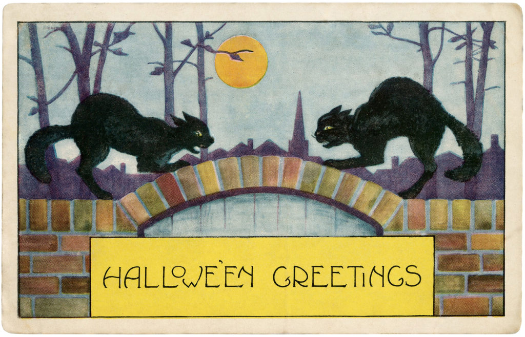 black cats fighting scary halloween vintage
