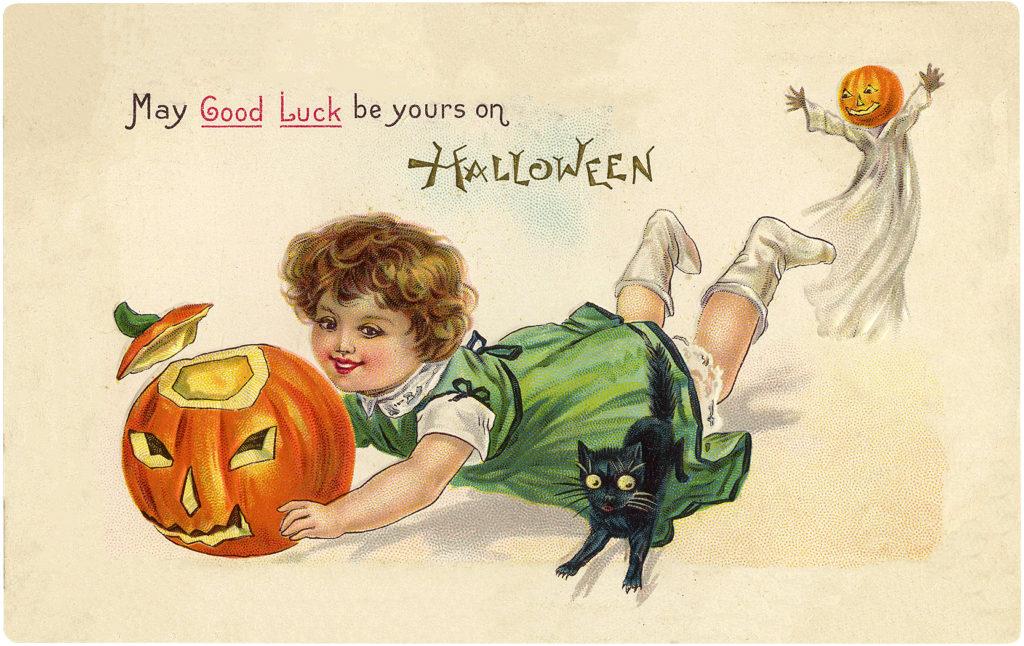Halloween girl cat pumpkin illustration