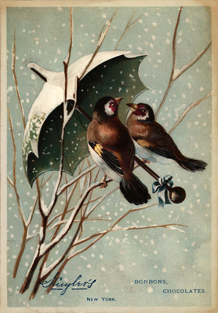 umbrella birds snowing illustration
