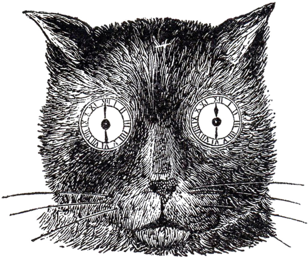 steampunk cat halloween image