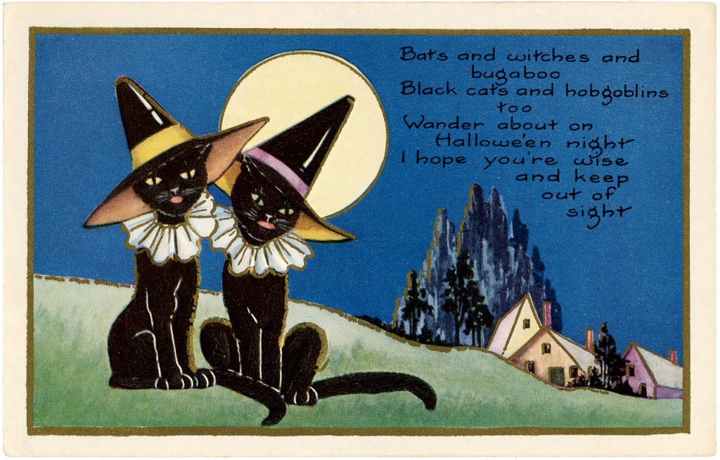 black cats moon witch