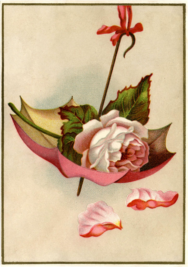vintage umbrella rose image