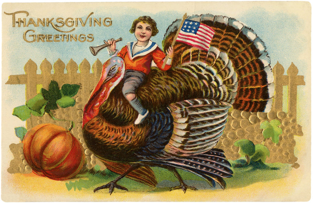 Boy Flag Turkey Thanksgiving Image